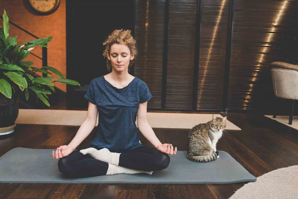 Pet yoga is good for pet health and your bond with your pet