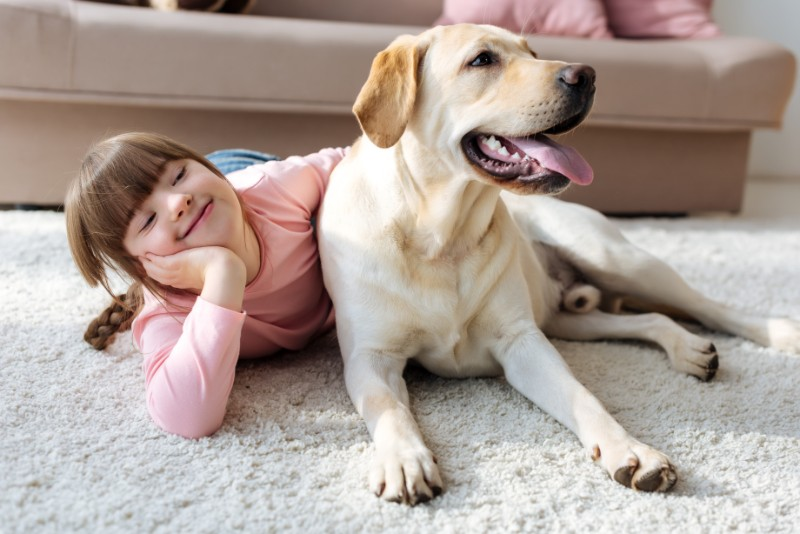 Pets Helping Children with Disabilities Is a Beautiful Thing